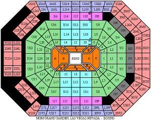 MGM Grand Garden Arena, Las Vegas