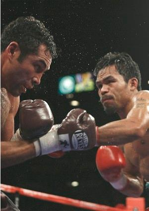 The Pacman - King of the World: HoganPhotos.com