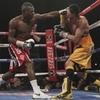 Judah v Malignaggi outperforms Rigondeaux v Agbeko