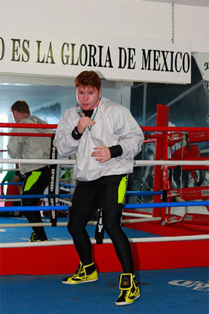 Alvarez begins training for Mayweather Jr