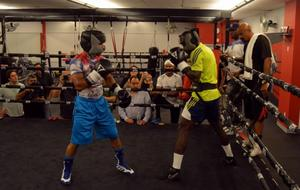 Gamboa Media Workout Quotes And Photos