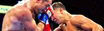 Golovkin knocks out Rubio in two rounds