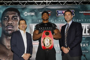 Joshua Reveals Fury Sparring Session