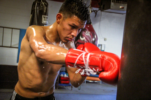 Flores Returns Against Avalos