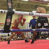 Sanchez defeats Huerta