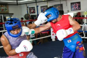 Pacquiao And Matthysse Step Up Training Ahead Of Title Battle