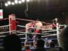 Provodnikov Easily Tops Torres